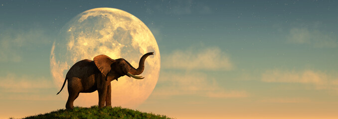 elephant and sunset Fotomurales