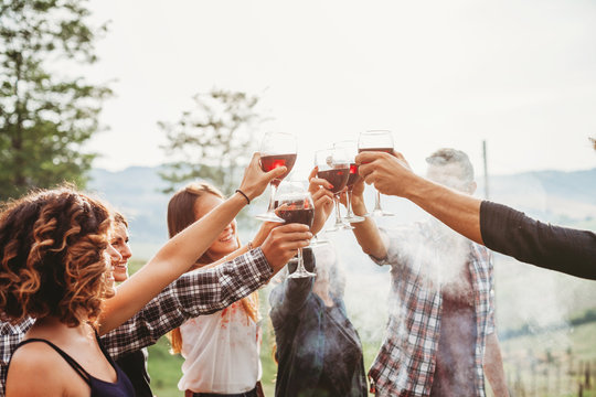 Group of friends making a toast during a barbecue in the countryside - Happy people having fun at a picnic on the hills in summer