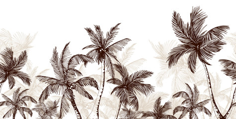Endless horizontal scenery with palm trees