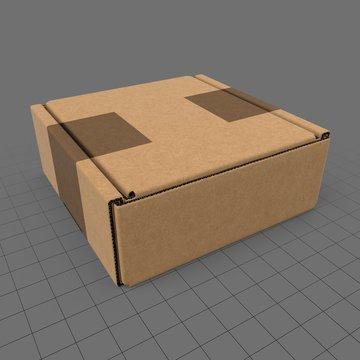 Closed carton box 3