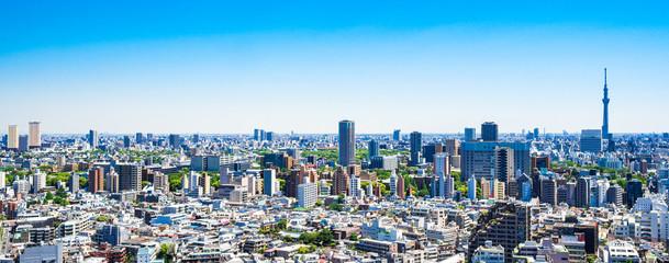 Fototapeta 東京 青空と都市風景 ワイド obraz