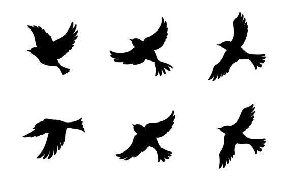 飛ぶ鳥のシルエットセット