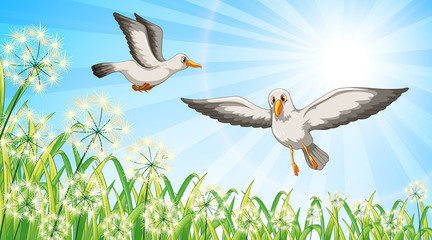 Stores à enrouleur Jeunes enfants Nature scene background with two birds flying in garden