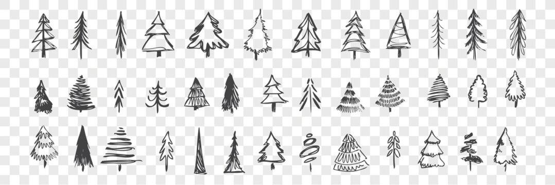 Hand drawn christmas trees set