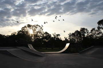 Foto auf Leinwand Grau Verkehrs skate park halfpipe sunset