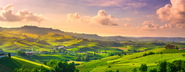 Langhe vineyards panoramic view, Barolo and La Morra, Piedmont, Italy Europe.