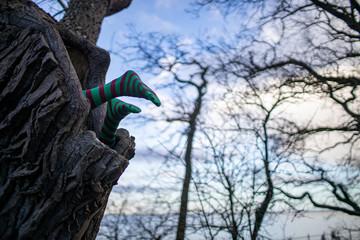 Füße ragen aus einem Baum, Installation von Künstler Rudolf Behrens, Dangast