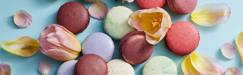 top view of assorted delicious french macaroons with floral petals on grey background, panoramic shot Wall mural
