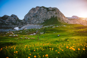 壁紙(ウォールミューラル) - Idyllic summer day in the Durmitor National park. Location place Sedlo pass, Montenegro.