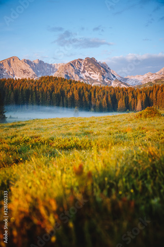 Wall mural Misty summer day in the Durmitor National park. Location place village Zabljak, Montenegro.