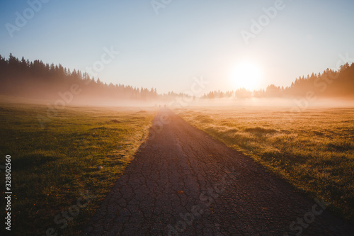 Wall mural Fantastic misty pasture in the sunlight. Locations place Durmitor National park, Montenegro.