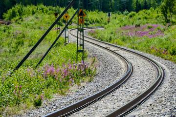Deurstickers Noord Europa railway in forest, in Sweden Scandinavia North Europe