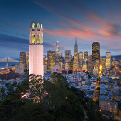 Wall Mural - San Francisco downtown with Coit Tower in foreground. California famous city SF. Travel destination USA