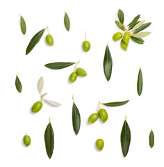 Green olive and leaves