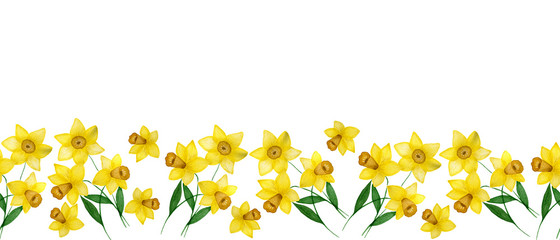 seamless decorative border with daffodil flowers, banner design with watercolor spring daffodil flower and copy space, beautiful springtime floral ornament