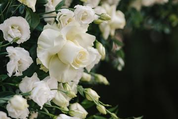 Poster Bloemen Flower arrangement for decoration of a wedding ceremony, celebration, festive event. Copy space to your text.