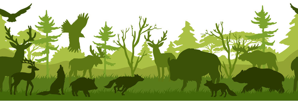 Horizontal seamless landscape with forest animals' silhouettes. Coniferous woods with bear, wolf, fox, stag, deer, eagle, falcon, buffalo, pig. Green wildlife background for prints, advertisements
