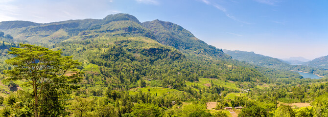 Wall Mural - Panoramic view at the nature near Nuwara Eliya - Sri Lanka