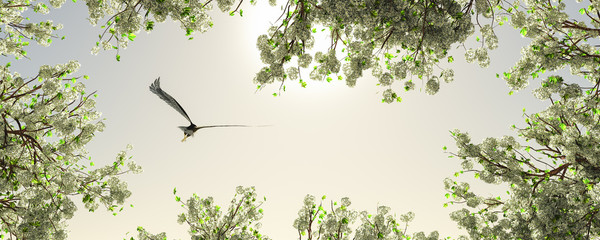 Foto op Plexiglas Eagle eagle flying among the flowers of a trees