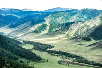 Foto op Canvas Olijf Beautiful views and landscape of Altai nature.