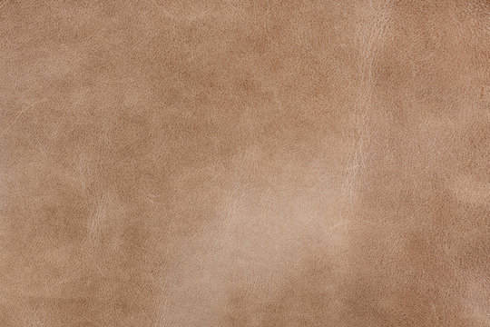 Old light brown smooth natural leather in small grain textured background