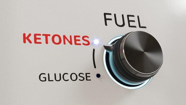 """A """"fuel"""" knob set to ketones, out of glucose and ketones"""