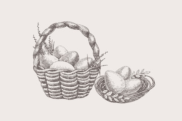 Set of hand-drawn symbols of spring religious holiday. Easter eggs lie in a nest and a basket with primroses. Happy Easter. Festive seasonal vector illustration on a light background.