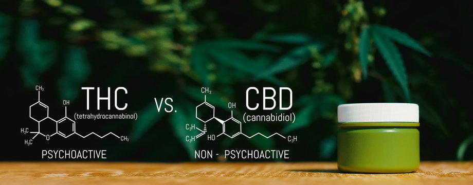 Marijuana CBD Vs THC Poster with Scientific Formula, CBD Elements and THC in Marijuana and Medical Health, Cannabis Industry, Growing Hemp, Pharmacy Business