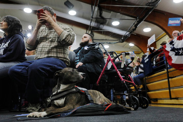 A service dog sits next to its owner as U.S. Democratic presidential candidate Bernie Sanders speaks during a town hall in Flint, Michigan