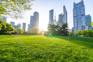 city skyline with park Fototapete