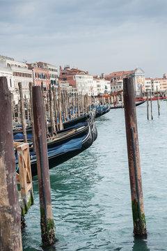Gondolas on the Riva degli Schiavoni in Venice