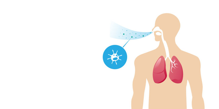 human body with lungs affected by virus cells bacteria and fungi into respiratory of human from breathe portrait horizontal vector illustration