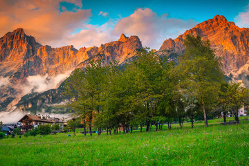 Wall Mural - Summer alpine landscape with flowers and mountains at sunset, Italy