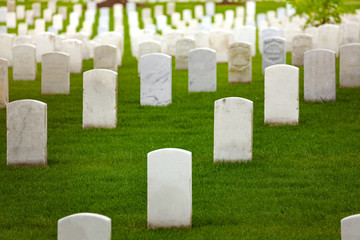 Fototapete - Military cemetery graveyard and tombstones many white grave tombs on the green grass lawn