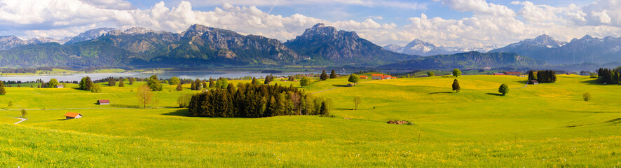 Poster Landscapes panoramic landscape with meadow and lake in front of alps mountains