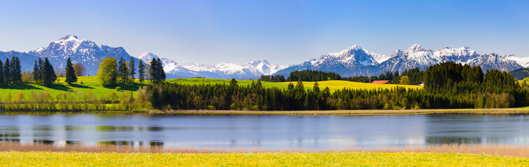 Photo sur Plexiglas Bleu ciel panoramic landscape with meadow and lake in front of alps mountains