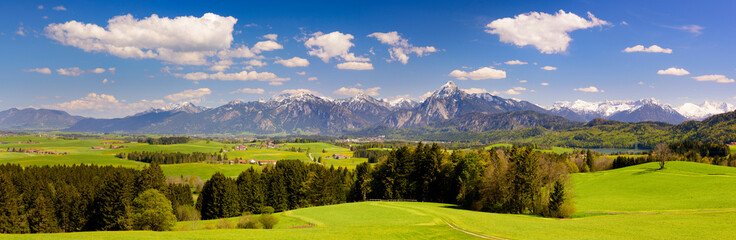 Tuinposter Alpen panoramic landscape with meadow and lake in front of alps mountains