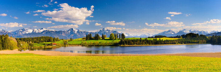 panoramic landscape with alps mountains behind flowers and lake at springtime
