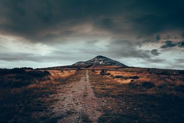 Photo sur Plexiglas Noir Moody Nature