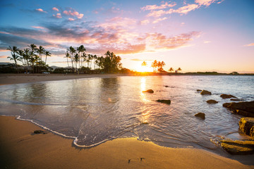 Wall Mural - Hawaiian beach