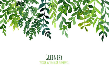 Greenery drop header, watercolor botanical background, leaves and branches