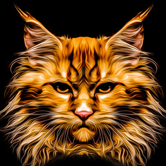 Cat head colorful illustration on black background