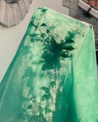 Leaves peaking through a green veil