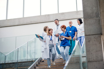 Group of doctors walking down stairs on medical conference. Fotomurales