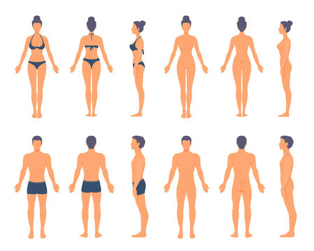 People anatomy. Athletic man and woman standing in full length with no face. Front, side, back view. Vector cartoon simple flat style illustration isolated on white background.