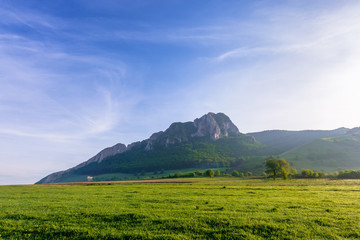 rock formation on the field at sunrise. beautiful rural landscape in mountains. wonderful scenery in spring. clouds on the blue sky. forest on the hills