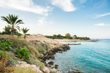 Foto auf AluDibond Zypern Cyprus. Mediterranean Picturesque Landscape with Palm Trees.