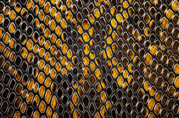 Wall Mural - Yellow python leather, skin texture for background.