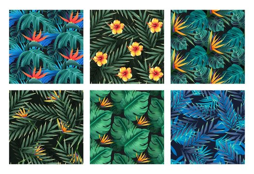 Seamless set. Bright tropical patterns with jungle plants. Exotic backgrounds with tropical leaves