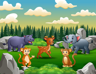 Happy wild animals living in the green field